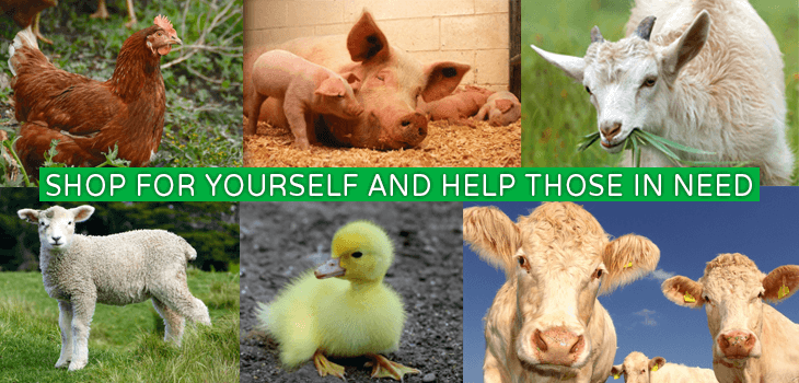 Vegannection Charity Banner